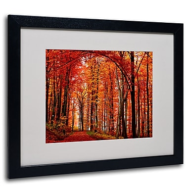 Trademark Fine Art Philippe Sainte-Laudy 'The Red Way' Matted Art Black Frame 16x20 Inches