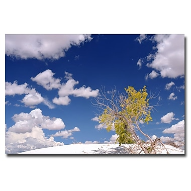 Trademark Fine Art Philippe Sainte Laudy 'Clouds and Loneliness' Canvas Art 22x32 Inches