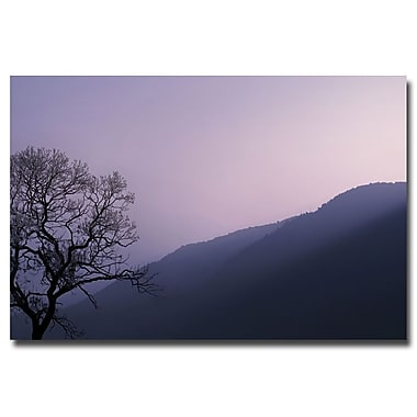 Trademark Fine Art Philippe Sainte Laudy 'Purple Hours' Canvas Art 16x24 Inches