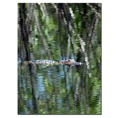 Trademark Fine Art FL Gator Camouflage by Patty Tuggle-Canvas Art