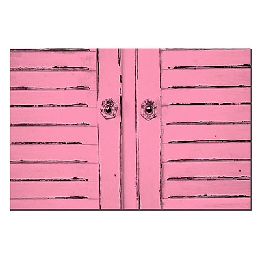 Trademark Fine Art Shabby Chick in Pink by Patty Tuggle Pat-Canvas Art