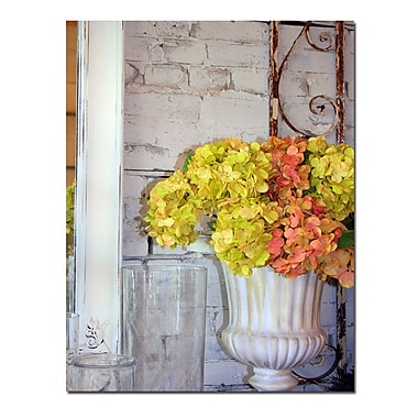 Trademark Fine Art Shabby Flowers Still Life by Patty Tuggle-Canvas Art