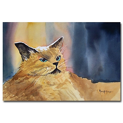 Trademark Fine Art Ryan Radke 'Fat Cat' Canvas Art 16x24 Inches