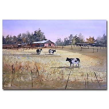 Trademark Fine Art Ryan Radke 'Heart of Wisconsin' Canvas Art 30x47 Inches