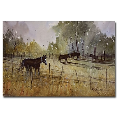 Trademark Fine Art Ryan Radke 'Pastoral' Canvas Art 22x32 Inches