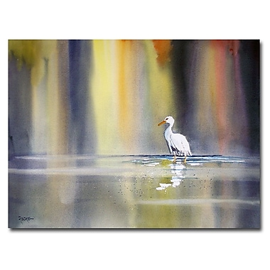 Trademark Fine Art Ryan Radke 'Solitude' Canvas Art 18x24 Inches