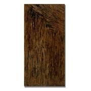 Trademark Fine Art Rachel Rouse 'Call Me Mara' Canvas Art