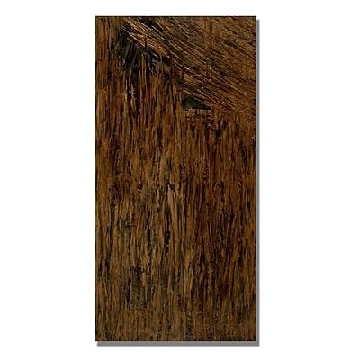 Trademark Fine Art Rachel Rouse 'Call Me Mara' Canvas Art 16x32 Inches