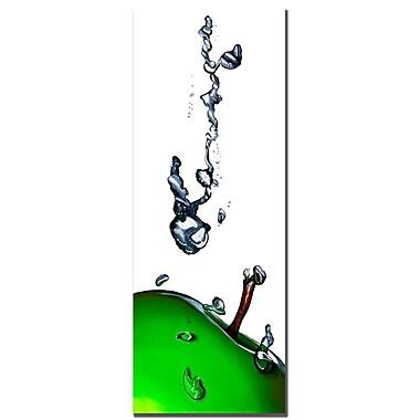 Trademark Fine Art Roderic Stevens 'Granny Splash II ' Canvas Art