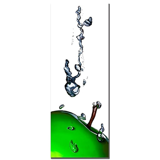 Trademark Fine Art Roderic Stevens 'Granny Splash II ' Canvas Art 12x32 Inches
