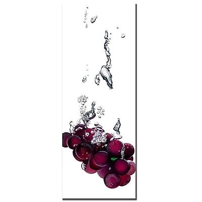 Trademark Fine Art Roderic Stevens 'Grapes Splash II ' Canvas Art 12x32 Inches