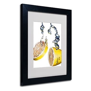 Trademark Fine Art Roderick Stevens 'Lemon Splash II' Matted Art Black Frame 11x14 Inches