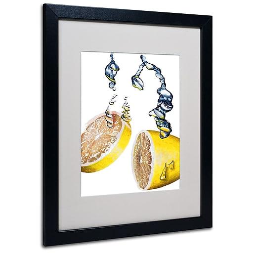 Trademark Fine Art Roderick Stevens 'Lemon Splash II' Matted Art Black Frame 16x20 Inches