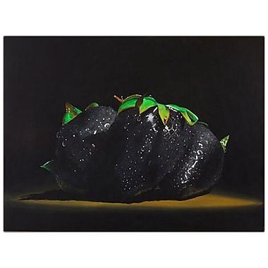 Trademark Fine Art Roderick Stevens 'Black Strawberries' Canvas Art 14x19 Inches