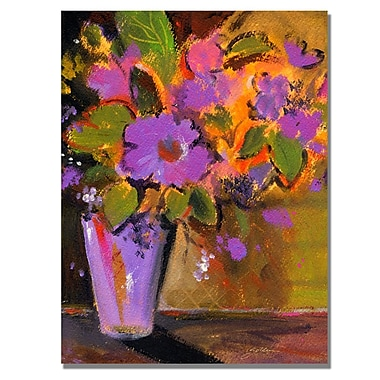 Trademark Fine Art Shelia Golden 'Purple Magenta Flowers' Canvas Art 26x32 Inches