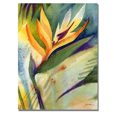 Trademark Fine Art Shelia Golden 'Bird of Paradise' Canvas Art 18x24 Inches