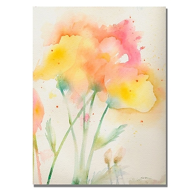 Trademark Fine Art Shelia Golden 'Garden Poppies' Canvas Art 18x24 Inches