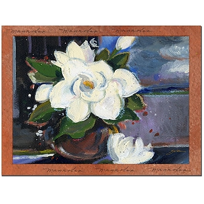 Trademark Fine Art White Magnolia by Sheila Golden-Gallery Wrapped 1