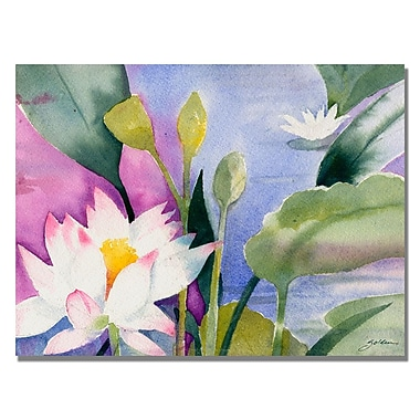 Trademark Fine Art Shelia Golden 'Lotus Pond' Canvas Art. 35x47 Inches