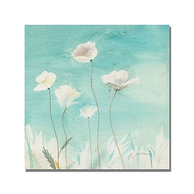 Trademark Fine Art Shelia Golden 'White Poppies' Canvas Art. 18x18 Inches