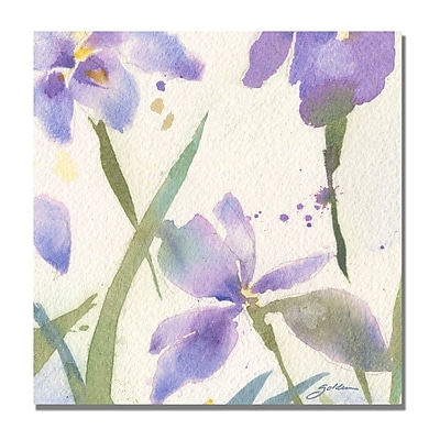 Trademark Fine Art Shelia Golden 'Purple Iris' Canvas Art 18x18 Inches