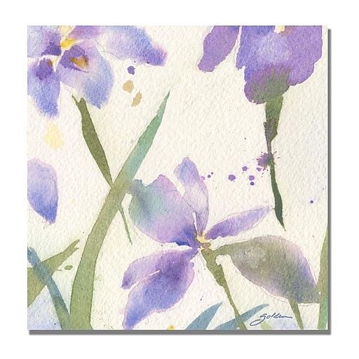 Trademark Fine Art Shelia Golden 'Purple Iris' Canvas Art 24x24 Inches