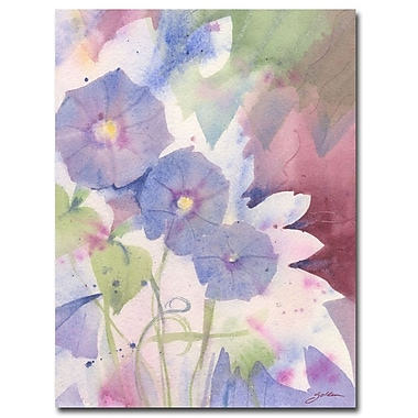 Trademark Fine Art Shelia Golden 'Morning Glory' Canvas Art 35x47 Inches