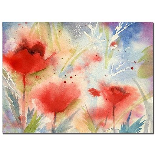 Trademark Fine Art Sheila Golden 'Red Poppy Splash' Canvas Art 14x19 Inches