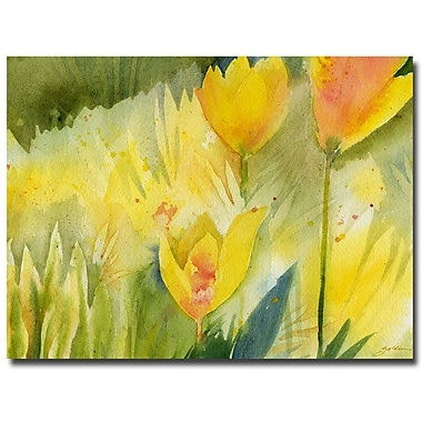 Trademark Fine Art Sheila Golden 'Path of Yellow Flowers' Canvas Art 35x47 Inches