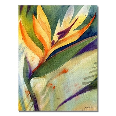 Trademark Fine Art Sheila Golden 'Bird of Paradise' Canvas Art 18x24 Inches
