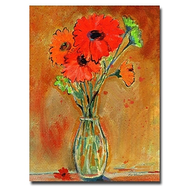 Trademark Fine Art Sheila Golden 'Daisy Vase' Canvas Art 18x24 Inches