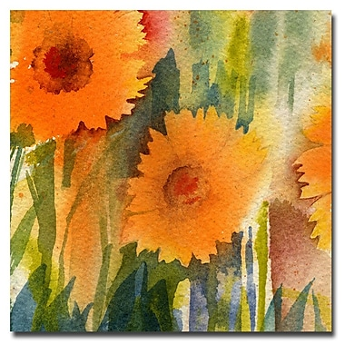 Trademark Fine Art Sheila Golden 'Orange Wild Flowers' Canvas Art 24x24 Inches