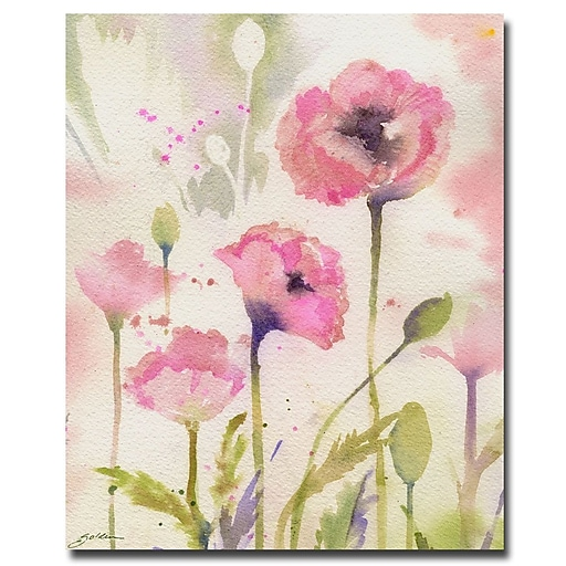 Trademark Fine Art Sheila Golden 'Oriental Poppy Garden' Canvas Art 26x32 Inches