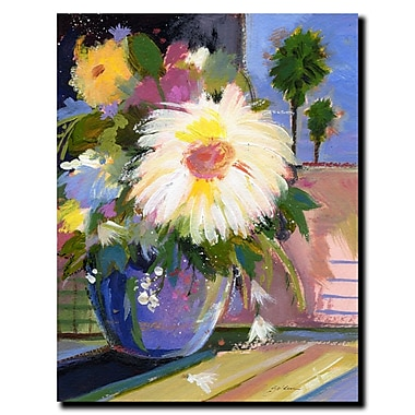 Trademark Fine Art White Splash by Sheila Golden-Gallery Wrapped Canvas 24x32 Inches