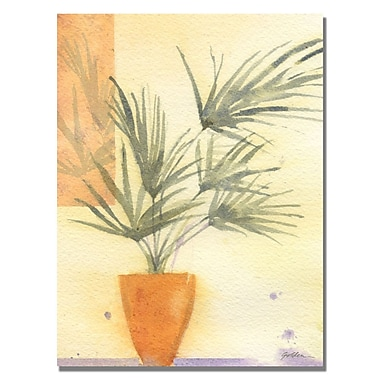 Trademark Fine Art Shelia Golden 'Palm' Canvas Art 18x24 Inches