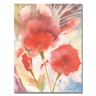 Trademark Fine Art Shelia Golden 'Red Echo' Canvas Art 35x47 Inches