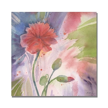 Trademark Fine Art Shelia Golden 'Budding Poppy' Canvas Art 35x35 Inches
