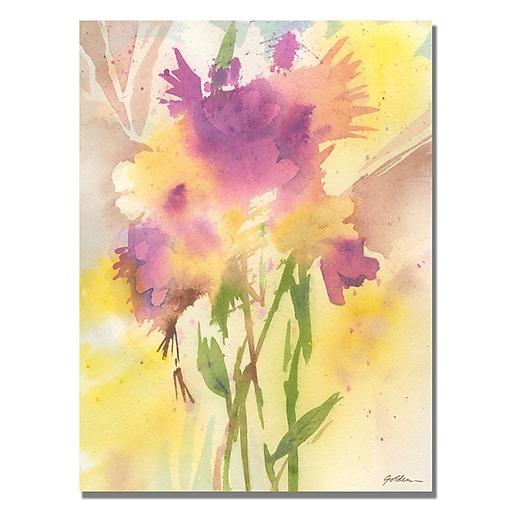 Trademark Fine Art Shelia Golden 'Maroon Shades' Canvas Art 35x47 Inches