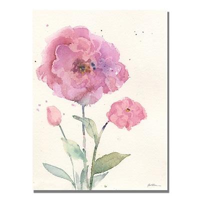 Trademark Fine Art Shelia Golden 'Carnelia Blush' Canvas Art 24x32 Inches