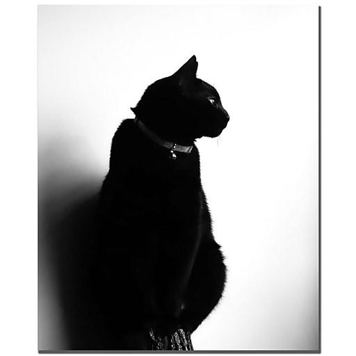 Trademark Fine Art Tammy Davison 'Chat Noir' Canvas Art 35x47 Inches