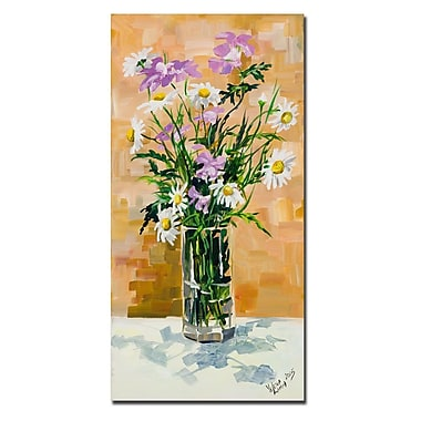 Trademark Fine Art Yelena Lamm 'Daisies' Canvas Art