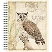 """LANG® Owl Sanctuary Spiral Bound Sketchbook, 11"""" x 9"""" (4006027)"""