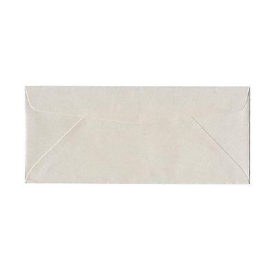 JAM Paper® #10 Business Envelopes, 4 1/8 x 9 1/2, Stardream Metallic Quartz, 1000/carton (185046B)