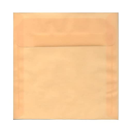 JAM Paper® 8.5 x 8.5 Square Translucent Vellum Invitation Envelopes, Spring Ochre Ivory, 25/Pack (PACV530)