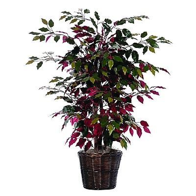 Vickerman 4' Artificial Capensia Bush In Decorative Rattan Basket, Green