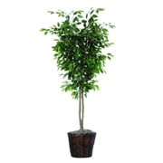 Vickerman 6' Artificial Ficus Deluxe Tree In Rattan Basket, Green