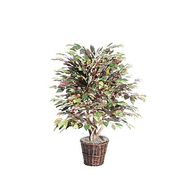 Vickerman 4' Mystic Ficus Extra Full Bush On Dragonwood Trunks With Rattan Container, Dark Green