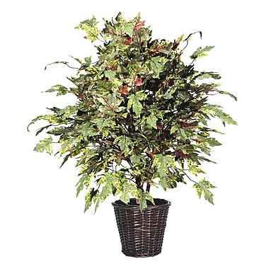 Vickerman 4' Frosted Maple Extra Full Bush On Dragonwood Trunks With Rattan Container, Dark Green