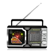 QFX R-14U AM/FM/TV2-5/SW1-SW9 Radio With USB