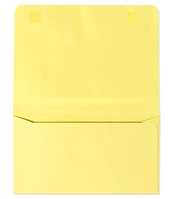 LUX #6 2-Way Envelopes (4 1/4 x 6 1/2 Closed) 500/box, Pastel Canary (R3870-500)